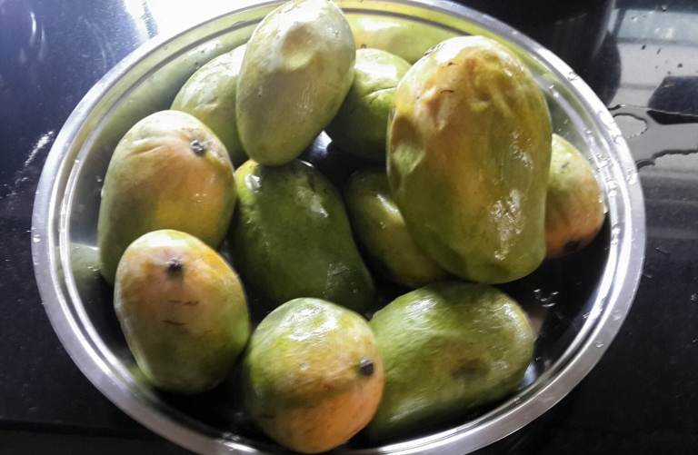 Mangoes from Venky's farm.