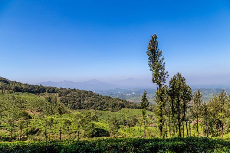 View from Chembra Peak Trek